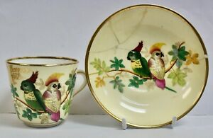 Rare Victorian Hand Painted Souvenir Cup & Saucer, Cockatoos, Pant-Y-Pant Hotel
