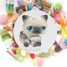 Authentic Littlest Pet Shop Black White Persian Cat 60 + *Suprise Food Items*