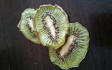 Dried Kiwifruit Slices 10g -No Preservatives 100% Kiwi Fruit - Pet Rabbit Treats