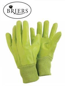 BRIERS Water Resistant Gardening Gloves - Size Medium