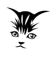 Gatto, Gattino Faccia Adesivo Vinile Decalcomania Auto, Laptop, finestra gratis