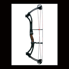 Win/&win Arrow Rigging Cat with Carabiner for all arrows suitable Archery