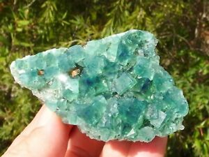 Fluorite Green Blue Diana Maria Mine Rogerley England. 6.5 x 4.5 cm.