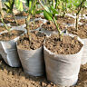Non-woven Biodegradable Nursery Bags Plant Grow Seedling Planting Pot Bag 100PCS