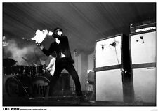 THE WHO - FLAMING GUITAR - VINTAGE MUSIC PHOTO POSTER - 23x33 UK IMPORT 48169