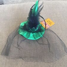 ****SPOOKY VILLAGE**** Witch HAT FOR PETS  (HALLOWEEN)  Green