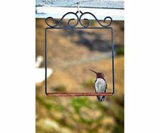 POP'S Flat Black Hummingbird Swing