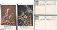 ADVERTISING c1920s NESTLES BIRDS HERON + JAY...2 PICTURE POSTCARDS