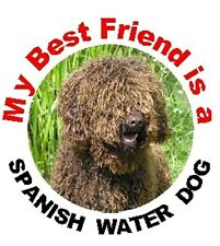 2 Spanish Water Dog Car Stickers MBF No 2 By Starprint