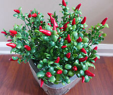 Artificial Plastic Plants Set of 4 Red Chili Grass