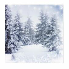 10x10FT Vinyl Christmas Snow Ice Forest Backdrop Studio Photography Background