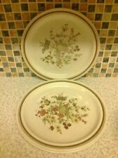 Stoneware Dinner Plate Porcelain & China