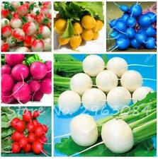 100 Pcs Colorful Radish Seed Sweet Fruit Vegetable Bonsai Plant Garden Supplies