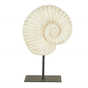 NEW Fossil Shell on Stand Sculpture - Stunning Ornament, Rustic & Natural Decor