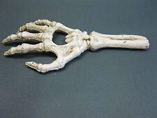 Esqueleto Hand Abrebotellas de hierro fundido 17cm Hueso GOTHIC PARTY