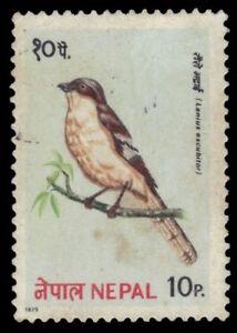 "NEPAL 366 - Northern Shrike ""Lanius excubitor"" (pf62134)"
