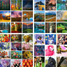 Scenery + Flowers +Animals Pattern DIY Paint By Number Kit Acrylic Oil Painting