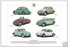VW BEETLE (1949-67) - Art Print - Split Oval Volkswagen