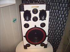 Grundig Stereo Klangbox Unikat-Eigenbau-200 Watt Spitze 4-8 Ohm Stand Alone Box
