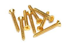 Pickup Mounting Ring Screws #2 - 19mm Gold Set of 8