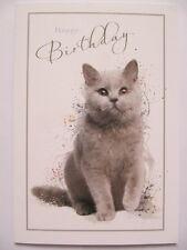 WONDERFUL COLOURFUL FLUFFY GREY KITTEN HAPPY BIRTHDAY GREETING CARD