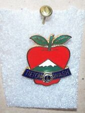 Tieton Washington Lions Club Pin