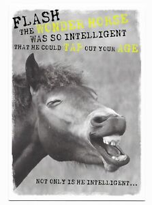 Happy Birthday Fun Horse Joke Greetings Card For Him/Her/Friend by Cards For You