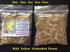 Buy 1 Get 1 Free Wild Yellow Goldenrod Flower Seeds 2,000 + Seeds 4 U