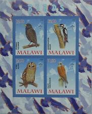 Birds / Owl Falcon Woodpecker Common Starling m/s Malawi 2008 MNH IMPERF #F209