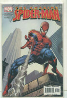 The Amazing Spider-Man #520 NM   Marvel Comics CBX28