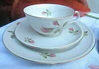 * hutschenreuther kaffee sammel gedeck mit rosendekor und gold porzellan vintage