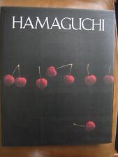 VERY RARE - Yozo Hamaguchi Catalog Raisonne M Gallery Book