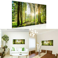 Nature Sunlight Forest Tree Canvas Painting Poster Picture Home Wall Art Decor