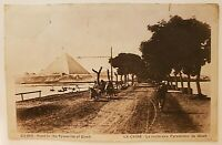 Egypt Vintage Postcard Cairo Road to the Pyramids of Gizeh Giza The Nile River