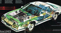 1983 Chevy CAMARO Brochure / Catalog with Color Chart: Z28,Berlinetta,Z-28
