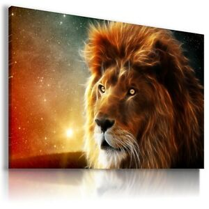 DRAWING LION  WILD ANIMALS PRINT CANVAS WALL ART PICTURE AB772 MATAGA