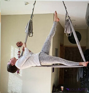 NEW $69 F.Life Aerial Yoga Gray Hammock Kit Includes All Daisy Chain, Carabiner