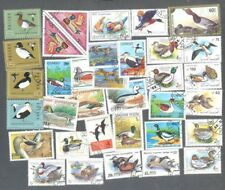 Ducks-Birds-- 50 all different stamp collection