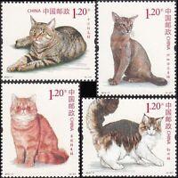CHINA 2013-17 Cat stamps Pet animal 貓