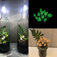 Glow In The Dark Mushrooms Terrarium Animal Safe Isopod Bioactive Fairy Garden