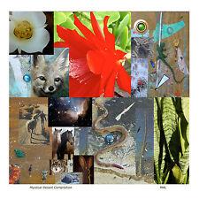 Contemporary Art -  Mystical Desert Compilation - Giclee Print