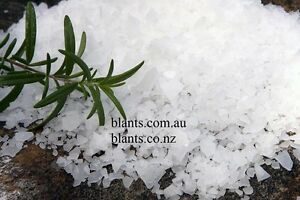 800g Magnesium Chloride Flakes Naturally Harvested
