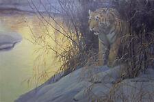 Siberian Tiger Robert Bateman Limited Edition Print New Sold Out Mint