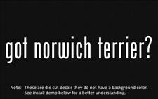 (2x) got norwich terrier? Sticker Die Cut Decal vinyl