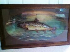 Herman Grieb trout diorama mount taxidermy pheasant fish duck squirrel
