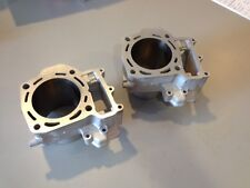 Kawasaki 750cc Brute Force Full Cylinder Set Front and Rear-Get $150 Core Refund