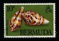 Bermuda 1982 10c Shells SG443 Used