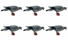6x PLASTIC  FULL BODIED PIGEON DECOY BODY PEG & LEGS SHOOTING MAGNET DECOYING
