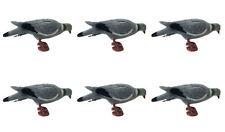 6x PLASTICA COMPLETO BODIED Pigeon Illusione Corpo Peg & GAMBE SHOOTING CALAMITA decoying