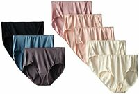 Hanes Womens Panties Microfiber Brief  (Pack of 8)- Pick SZ/Color.
